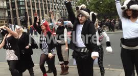 Anti-badger Cull Flash Mob Dance