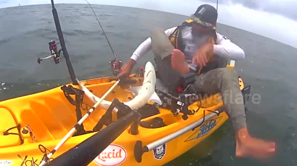 Shark tries to attack kayaker