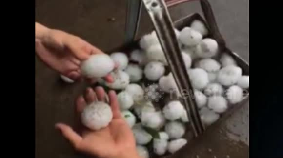 Tennis-ball sized hailstones smash up cars in northern China
