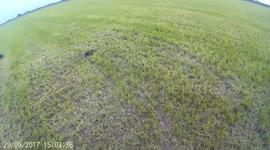 Newsflare - Amateur paramotor pilot in terrifying crash