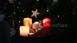 Newsflare - Video of beautiful lighted Christmas candles and a tiny ...