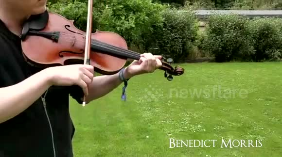 Newsflare - David Geaney & Benedict Morris - Muscial Jam!!