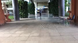 Newsflare - British tourist who slapped immigration officer