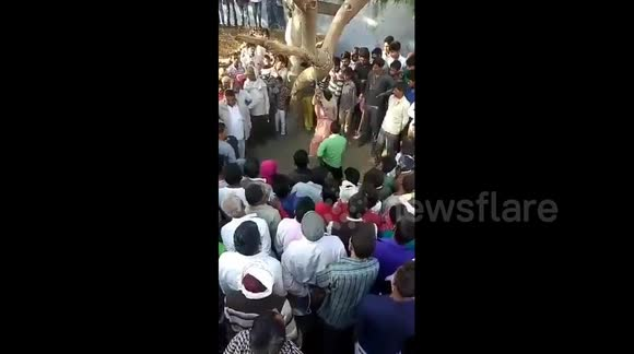 Newsflare - Shocking moment Indian woman is brutally flogged