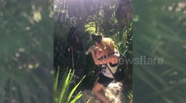 Newsflare - Cheeky monkey attacks tourist after stealing her hat