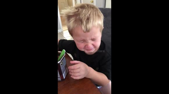 Newsflare Instant Regret Boy Insists On Tasting Cocoa Powder
