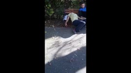 Newsflare - Disturbing video shows a man who appears to be high on