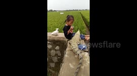 Newsflare - The Fearless Indonesian Girl Playing With A Crocodile