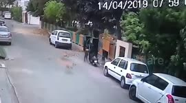 Newsflare - Shocking: Stray dogs attack toddler outside his