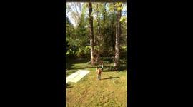 Newsflare - Tree Swing Fall
