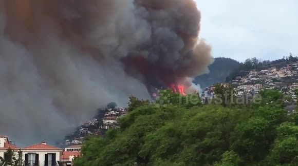 Huge forest fire breaks in Madeira