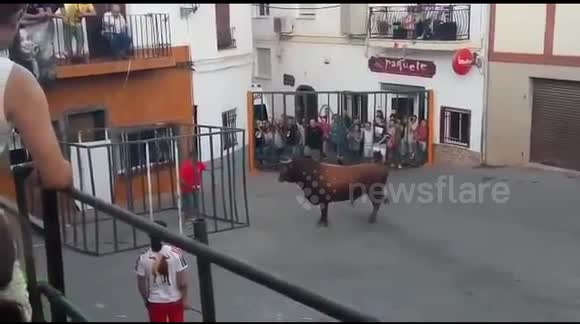 Bull breaks into cage and gores man