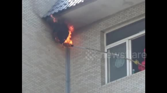 Firefighters remove hornet nest with fire