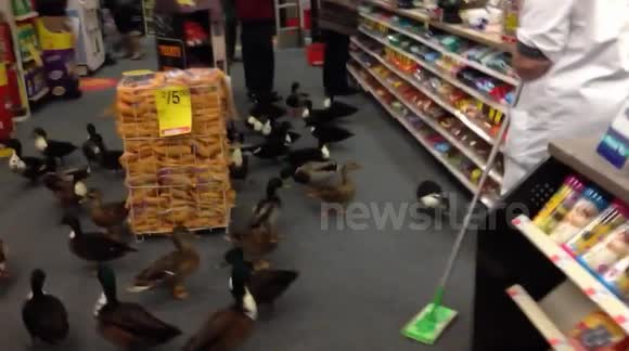 There was an incident last night at CVS